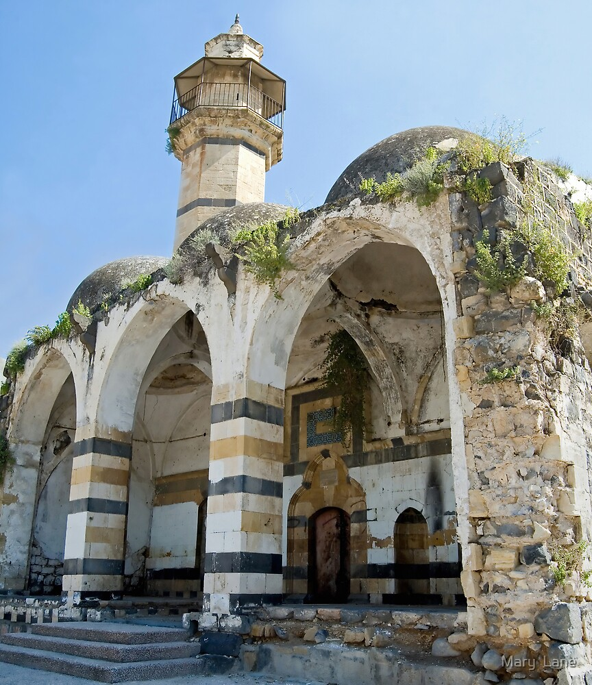 Tiberias Mosque by Mary  Lane