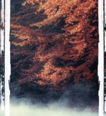Nature*s Mirror - Fall at the River Sticker