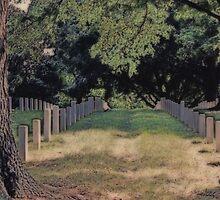 National Cemetery Danville VA by virginian