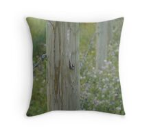 Line of Limitations Throw Pillow