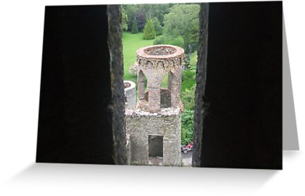 Castle Window View by coleen gudbranson