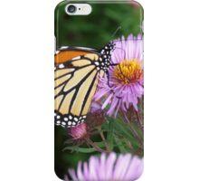 Butterfly on Purple iPhone Case/Skin
