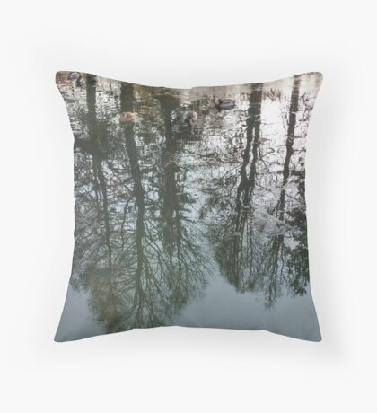 Tree reflections in a pond, ducks, autumn lake Throw Pillow