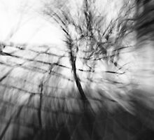 Black and white tree motion blur by The RealDealBeal