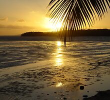 The Sun setting in Fiji by CAM77