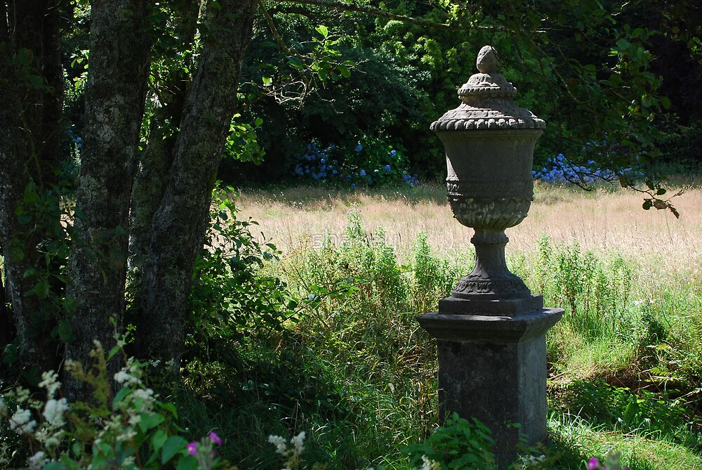 Urn by shakey