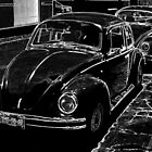 Beetles by richiewright