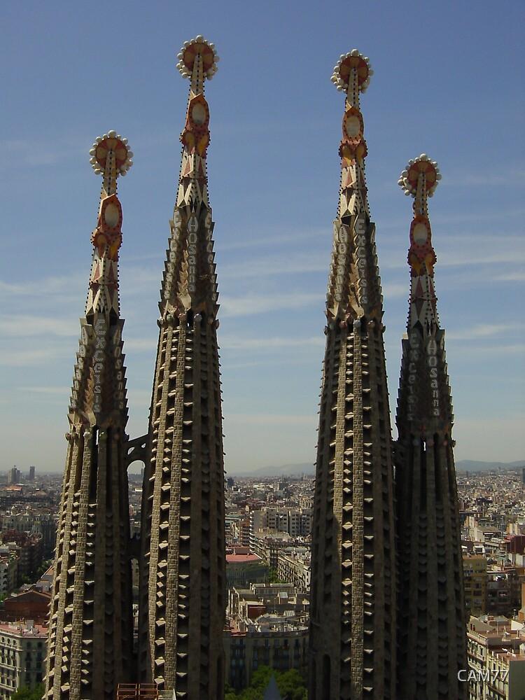 Sagrada Familia - Antoni Gaudi - Barcelona Spain by CAM77