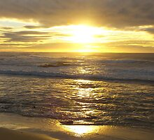 Sunraise At Nobby's Beach by Nina1962
