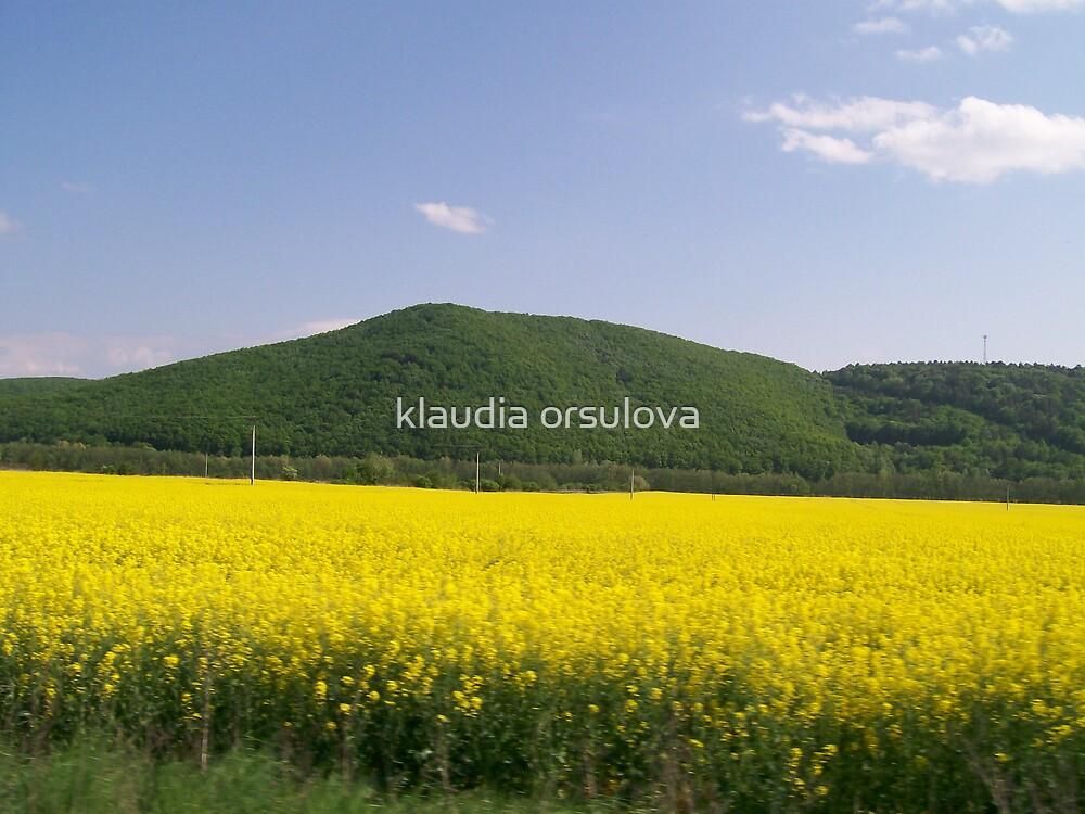 colour in slovakia by klaudia orsulova