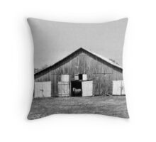 Lonely Days Throw Pillow