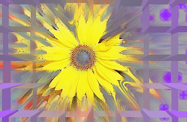 sunflower art by kristy  kenning