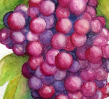 TUSCAN GRAPES Sticker