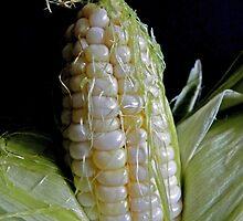 Mmm Mmm....Corn on the Cob by Martha Medford