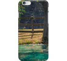 BEYOND THE FENCE iPhone Case/Skin