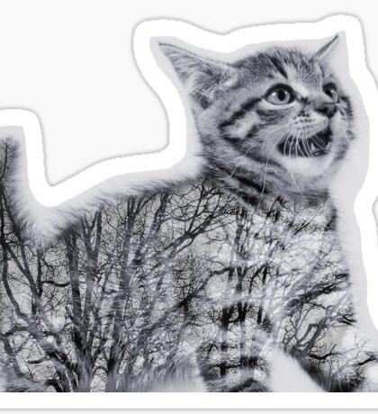 Double Exposure Kitten Sticker