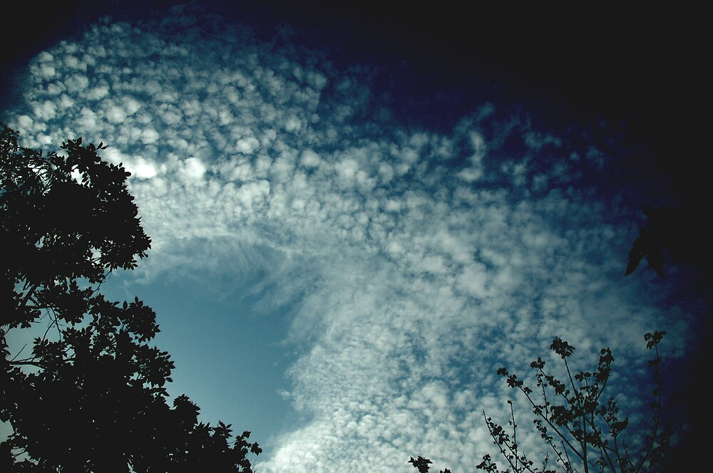 clouds by kathie