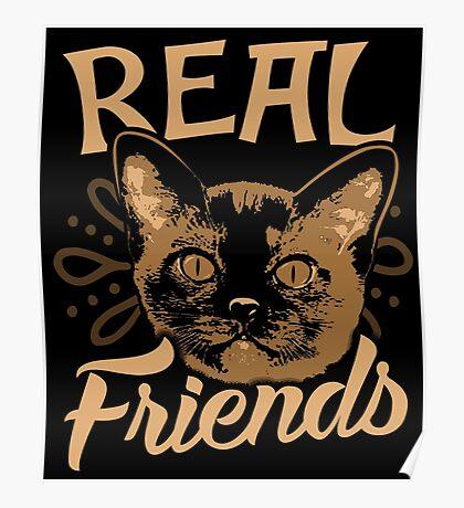 Burma Cat Poster