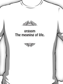 Orgasm The meaning of life  T-Shirt