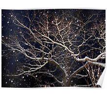Nightime Snow Poster