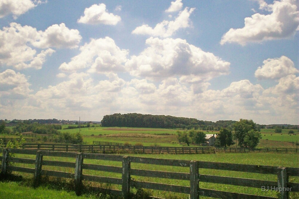 Country Side Beauty by BJ Hepner