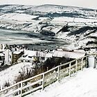 Winter - Robin Hoods Bay  by Carl Gaynor