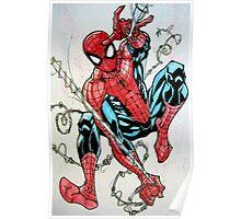 Spider-man Swinging Poster