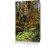 Killynether in the Autumn Sun....3 Greeting Card