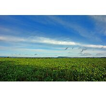 Shropshire Landscape. Photographic Print