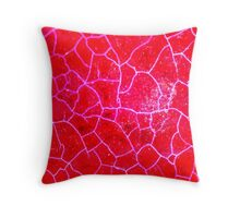 Red Dragon Vein Agate Pattern Throw Pillow