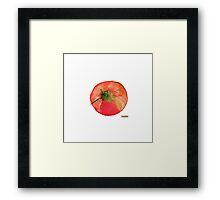 One Tomato Framed Print