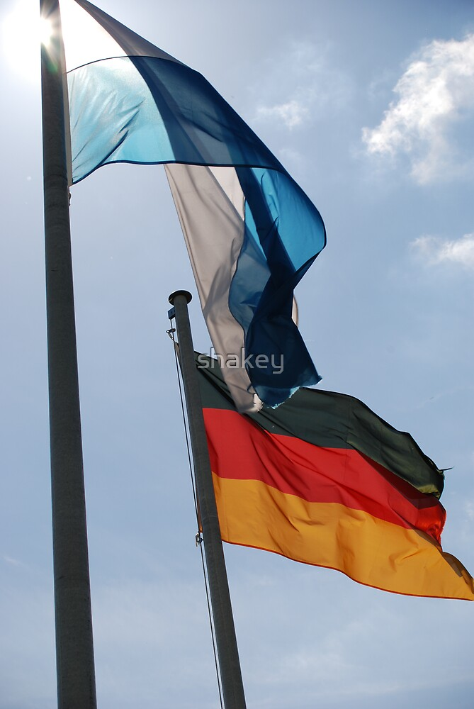 Flags by shakey