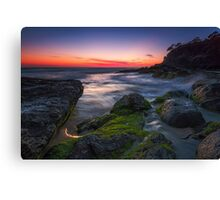 Snapper Sunrise Canvas Print
