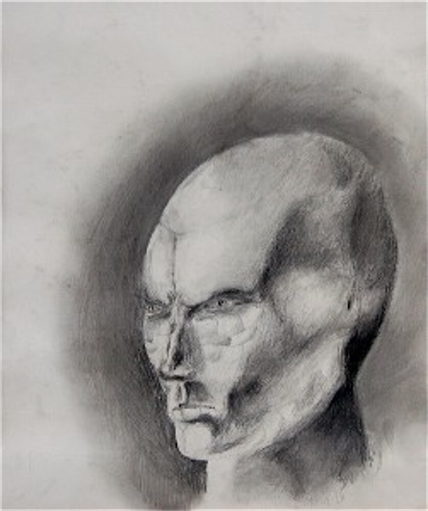Not Quite Human by Peter Mattson