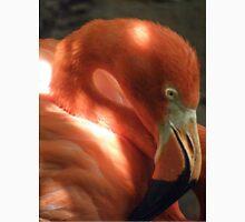 Shadowy Flamingo Unisex T-Shirt