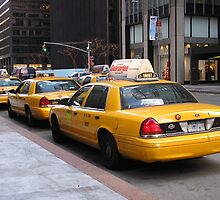 Taxi Taxi Taxi by Melissa Purves