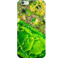 Green Sea Sediment Agate Pattern iPhone Case/Skin