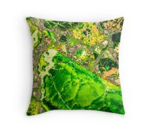 Green Sea Sediment Agate Pattern Throw Pillow
