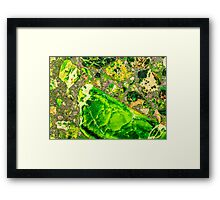 Green Sea Sediment Agate Pattern Framed Print