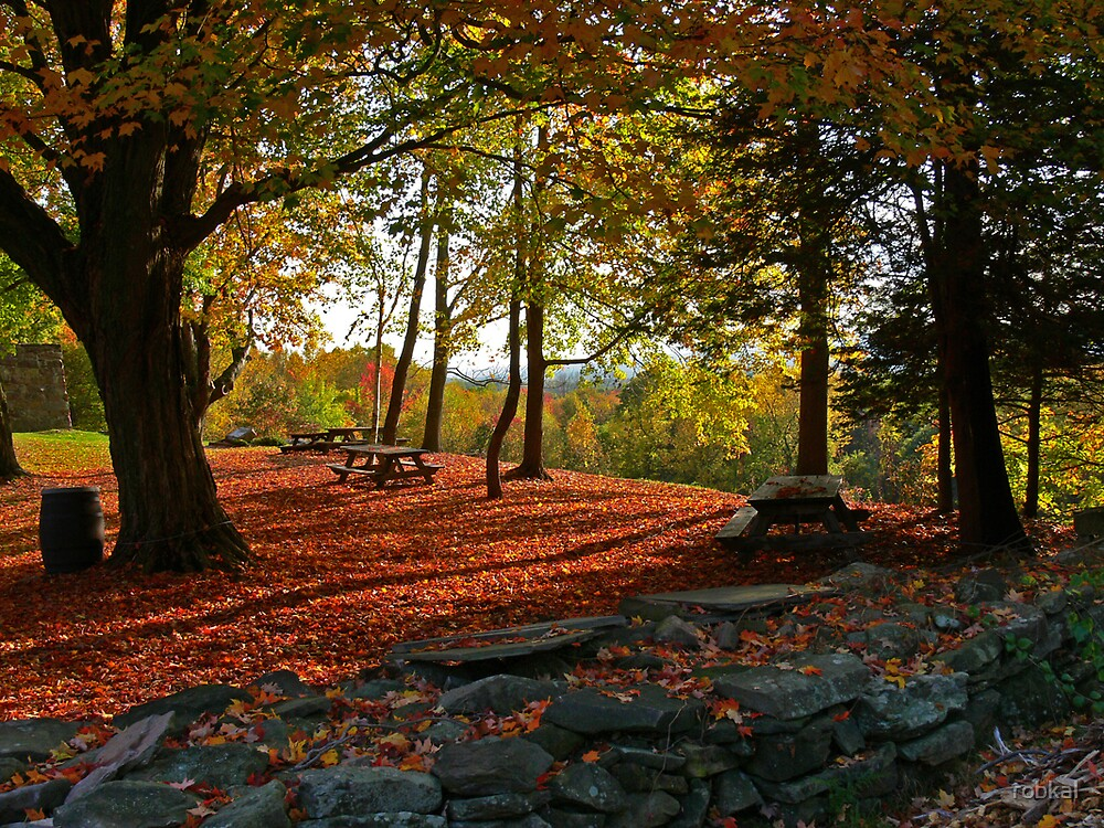 Autumn Shadows by robkal