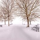 A Beautiful Winter's Morning  by John Poon