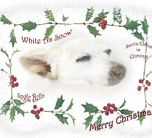 Little Tinker Has Christmas Dreams ~ Greeting Card by Susan Werby