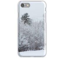 Second Snow  iPhone Case/Skin