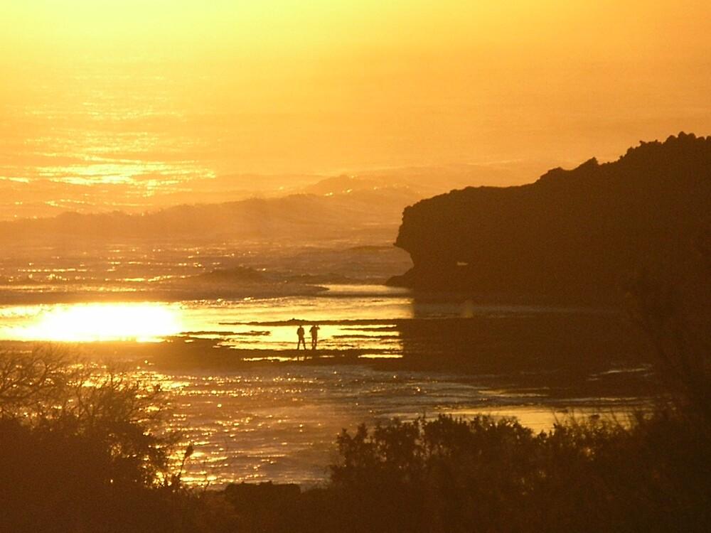 Sunset at Portsea Ocean Beach by avocado