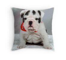 Pretty english bulldog Throw Pillow