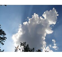 Soaring So High with your Head in the Sky Photographic Print