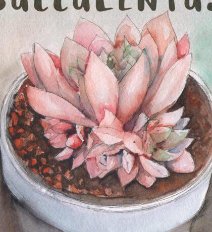 little pink succulentus Sticker