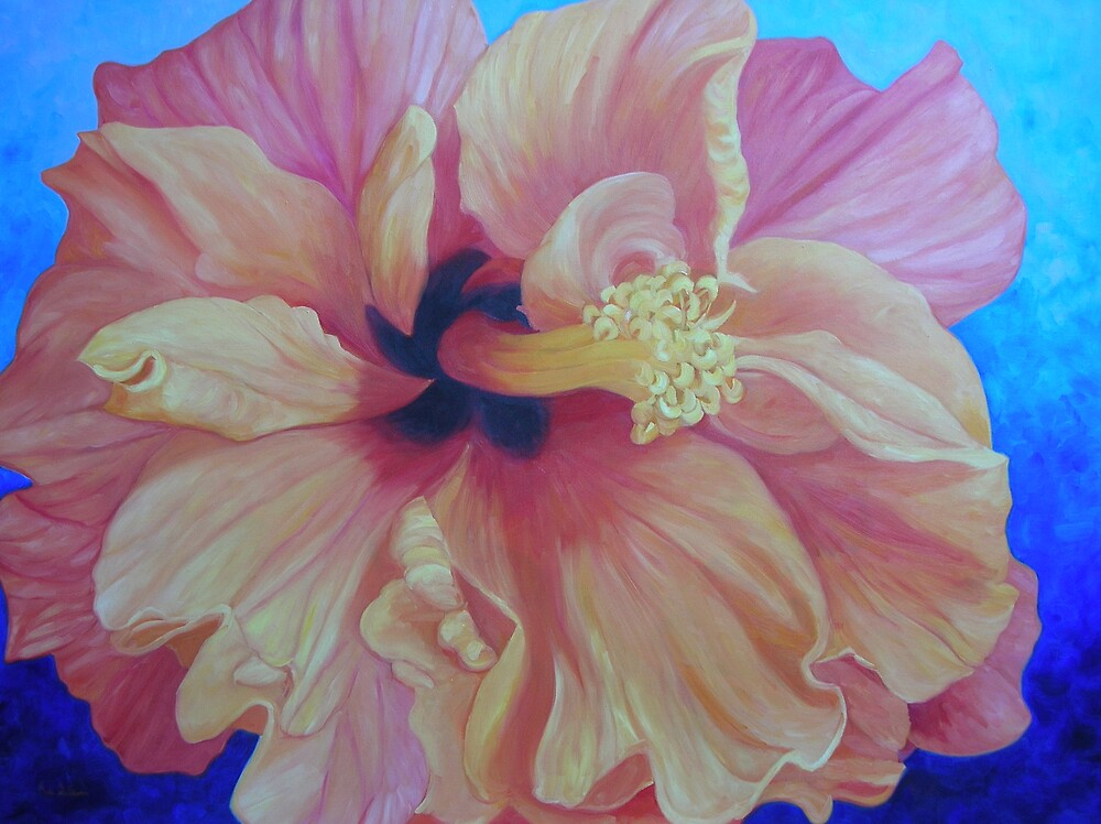Orange hibiscus by avocado