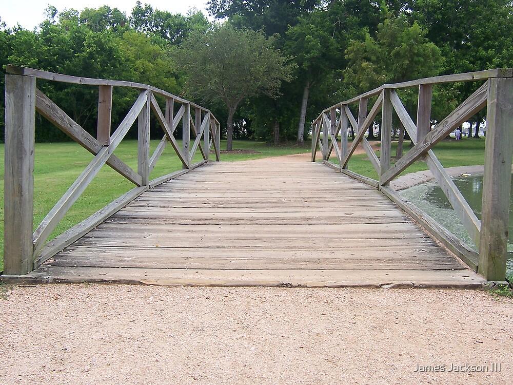 Bridge by James Jackson III