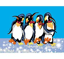 Dancing penguins Photographic Print